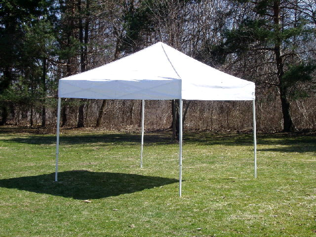Where to find Canopy 10 x 10 EZ Up - White in South Chicago Heights