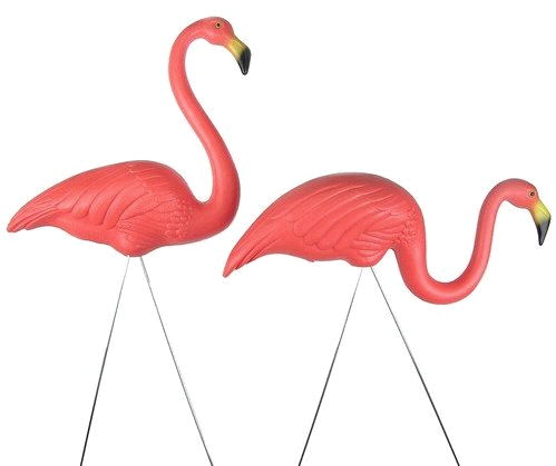 Where to find Pink flamingo-per ea in South Chicago Heights